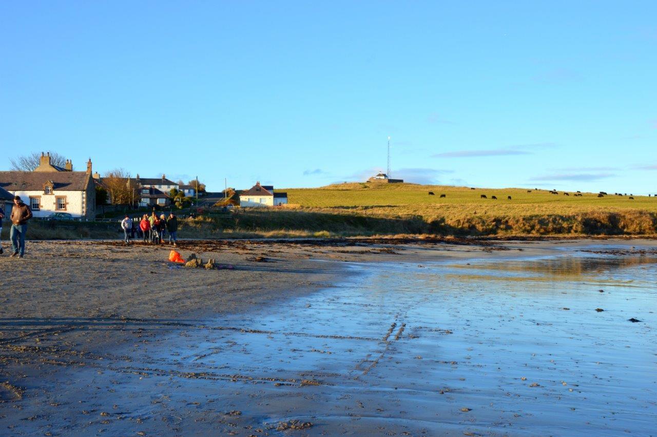 Scenery- Beach